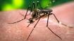 29 test positive for Zika in Jaipur, Central team to visit Rajasthan today; Bihar on alert