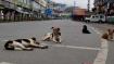 Stray dog feeds on infant's corpse inside hospital premises in Odisha