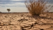 Facing worst drought in 100 years, showers and toilet restrictions imposed in Cape Town