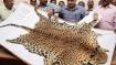 Poachers held for killing leopard, smuggling skin