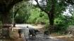 Haryana: Centre approves changing 'embarrassing' names of Ganda, Kinnar villages
