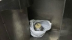 Bomb and a letter avenging Abu Dujana's death found on Akhal-Takht Express at Amethi
