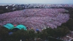 Lalu proves <i>lallu</i>, tweets badly done photoshopped image of anti-BJP rally to flaunt strength