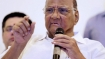 'No cause for concern as exit polls only Nautanki': Sharad Pawar slams predictions