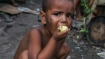 Malnutrition rates soar among Rohingya children in Bangladesh: UN