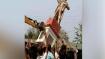 Lenin statue razed in Tripura: End of communism or rise of fascism?