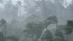 Kerala rain fury: Death toll now at 45