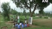 Sorry state of education: No school building, so Chhattisgarh students study under a tree