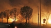 At least 60 killed in Greece forest fires