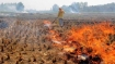 Government sanctions fund and subsidy to stop burning crop residue responsible for pollution