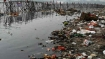 Gross Domestic Product vs. River Water Pollution in India