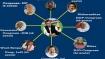 Lok Sabha polls 2019: Congress and allies set to retrace UPA-1 alliance