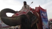 HC comes to the rescue of an elephant used for begging