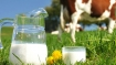 Here is what milk companies charge from customers and pay to farmers