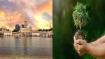 Delhi Gurudwaras to distribute saplings as 'prasad', DSGMC's Gogreen drive