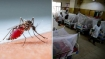 Dengue spread wings in B'desh with 80,000 cases
