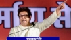 Maharashtra elections: MNS to eye disgruntled elements in BJP-Shiv Sena