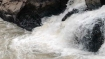 TN: Flood alert in Coimbatore, Nilgiris districts as Pillor dam brims