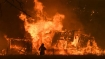 Australia bushfire crisis: As death toll climbs to 24, PM sets up national bushfire recovery agency