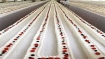 4.5-km long cake to be baked in Kerala's Thrissur on Jan 15
