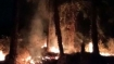 Fire breaks out in Vasai Fort, no casualty reported