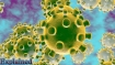 Coronavirus scare: Bengal seals border with Bhutan