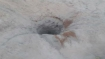 Telangana: 3-year-old boy falls into newly dug borewell in Medak district, rescue operations on