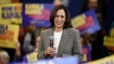 Who is Kamala Harris? Tracing her Indian origins