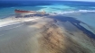 Explained: How deadly could oil spill be to marine ecosystem?
