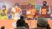 Free Covid vaccine promise in Bihar manifesto perfectly in order: Nirmala Sitharaman