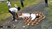 Blindfolded martial arts master creates world record by smashing 49 coconuts in 1 minute