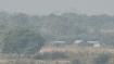 At 11.4 °C, Delhi records season's lowest minimum temperature