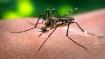 New genus of malaria detected in Kerala, announces Kerala Health Minister