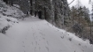 Shimla receives season's first snowfall; brings cheer to tourists