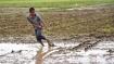 Centre directs fertiliser firms not to hike MRP of non-urea fertilisers