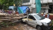Cyclone Tauktae: More than 2,000 houses, crops on 363 hectares damaged in Thane