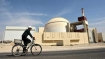 Iran shuts down nuclear plant for 'technical overhaul'