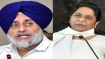 Punjab Assembly polls 2022: Akali Dal likely to forge alliance with Mayawati's BSP