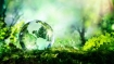 World Environment Day 2021: Theme, History, Significance, Motivational Quotes