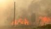 Canada: Wildfire destroys town of Lytton amid heat wave