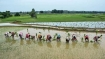 Tamil Nadu's first agriculture Budget gets mixed reaction from farmers