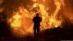 Greek PM apologizes amid 'unprecedented' wildfires