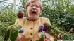 Parrots swoop in for Merkel swan song