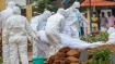 12-year-old boy dies of Nipah virus infection in Kozhikode, Central team rushed to Kerala