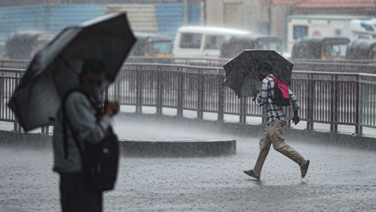 Heavy rains batter Thane, Palghar; NDRF helps in rescue ops