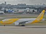 Singapore-bound flight makes emergency landing in Chennai, all paasengers safe