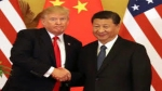 'China and US will lose by fighting': Xi Jinping tells Trump