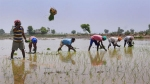 All eligible farmers to get loan waiver by month-end: Govt