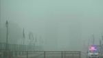 Delhi wakes up to dense fog: As visibility drops, 5 flights diverted, over 20 trains running late
