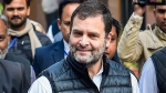 Violence in Delhi disturbing, says Rahul Gandhi on clashes over CAA